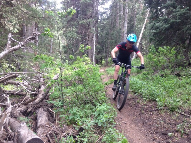 Ibis Ripley in American Fork Canyon - Truvativ Jerome Clementz Blackbox Bars
